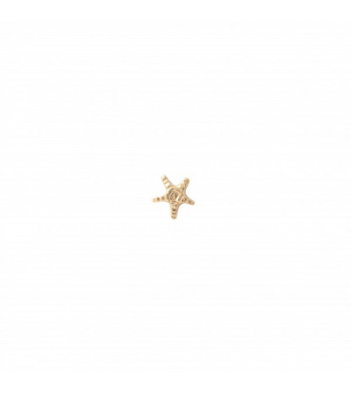 A Beautiful story Starfish Sterling Silver Gold-Plated Earring