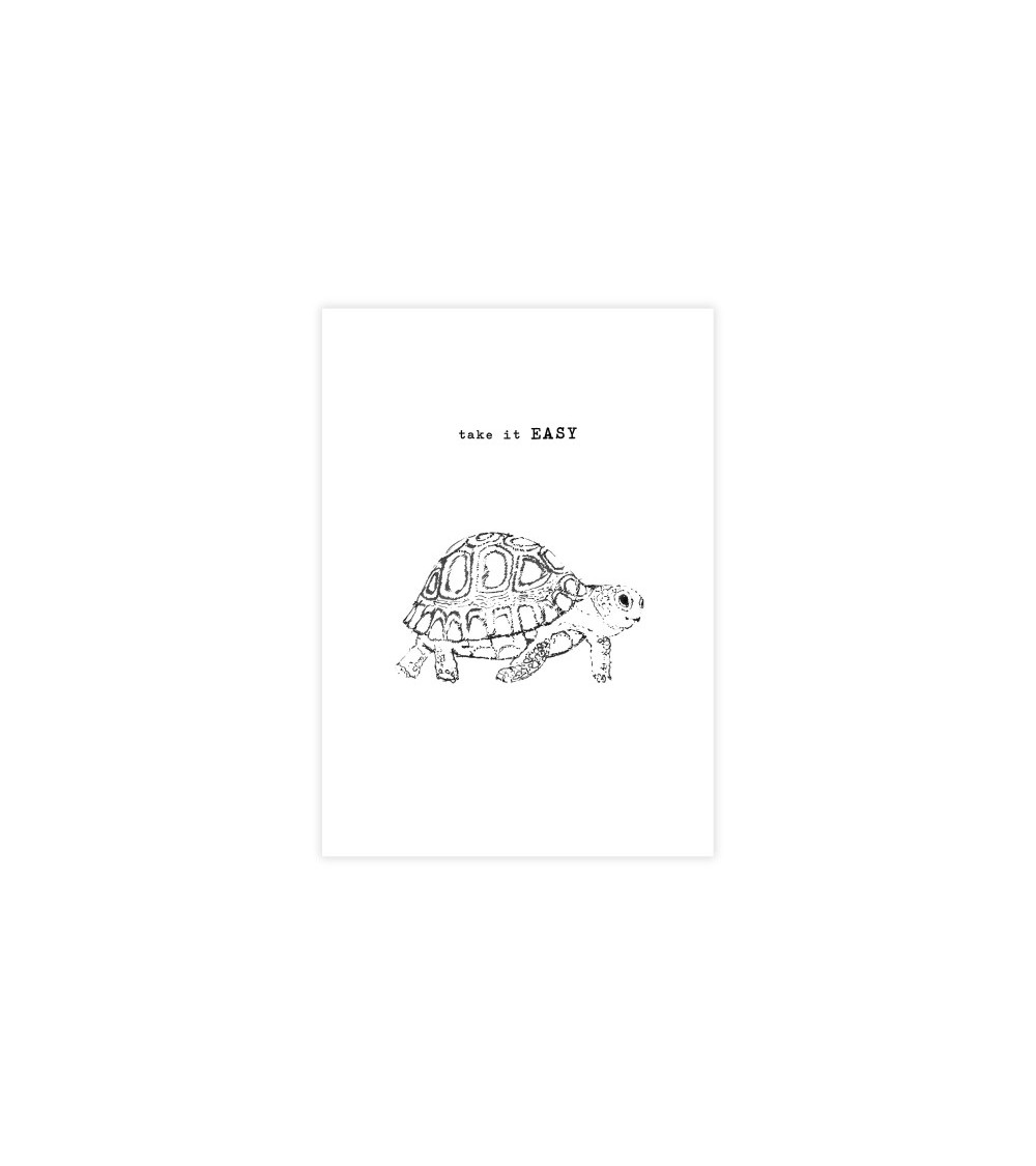 A Beautiful Story Greeting Card Turtle