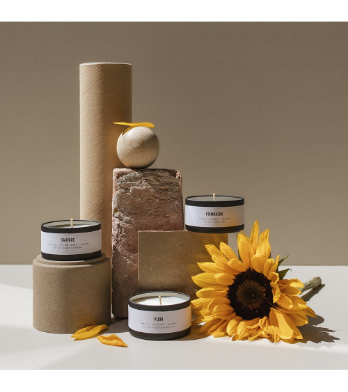 Brandt Candles Nomad Collection