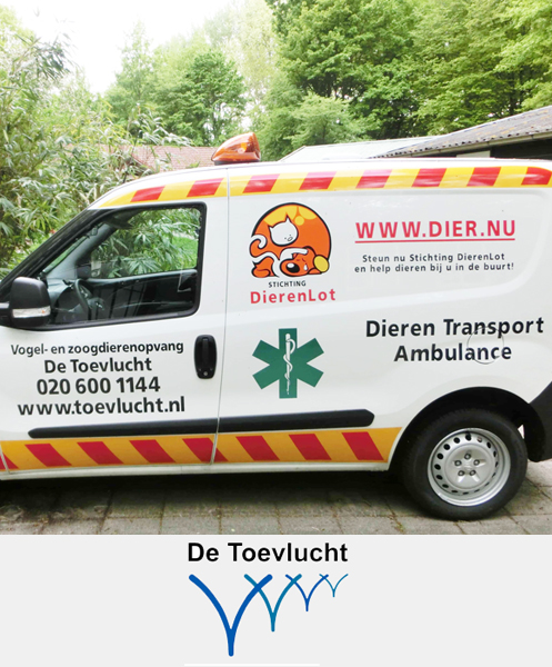 De Toevlucht & UP TO DO GOOD